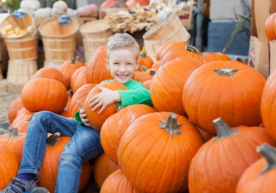 Fall Festivals Abound in and Near Ormond Beach