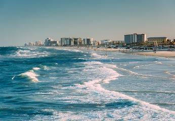 Get to Know Florida's Fun Coast