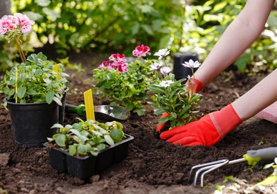 Top 3 Tips for Summertime Curb Appeal